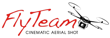 FlyTeam Logo